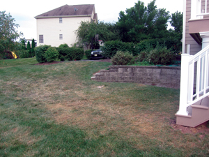 Landscape Project Before